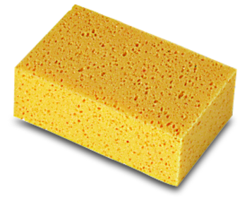 Sponges by Rubi