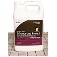 Advanced Green Enhance and Protect Sealer by The Tile Doctor
