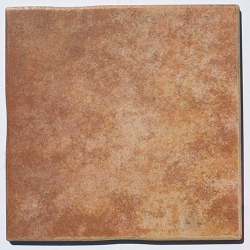 Clearance  Palatino 12x12 tile  Color  Marron